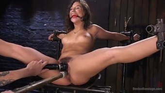 fucked up strange guy immobilizes succulent abella danger and hopelessness her furry cunt