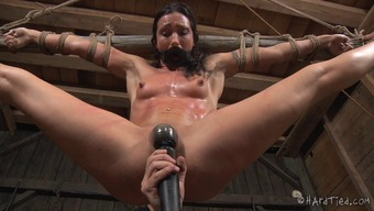 Exclaim as bondage missy pussy is taunted using toys in BDSM