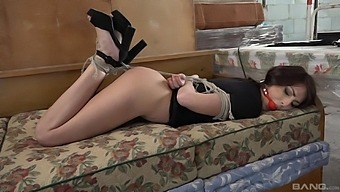 Dazzling babe used as a sex slave for naughty maledom scenes