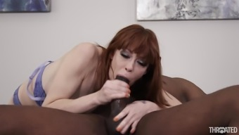 alexa nova is typically a skillful chick who likes kissing a man's black penis
